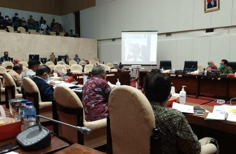 Menteri PPN Mengembangkan Indeks Kapasitas Ekonomi Daerah Untuk Mengukur Denyut Perekonomian